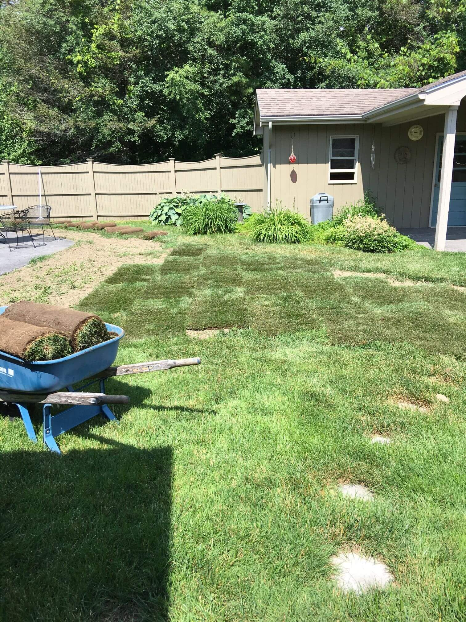 Lawn Care Project Eight