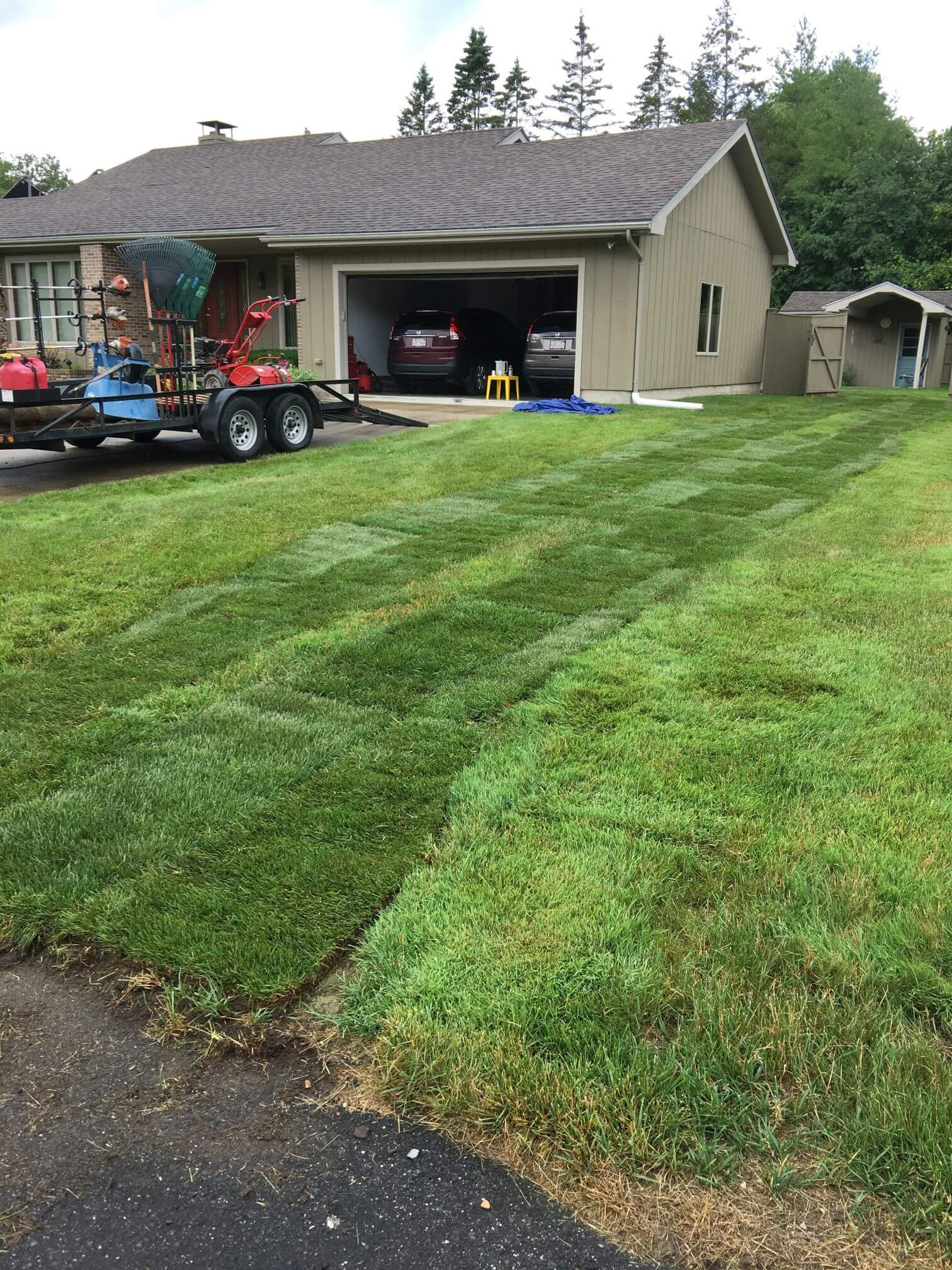 Lawn Care Project One