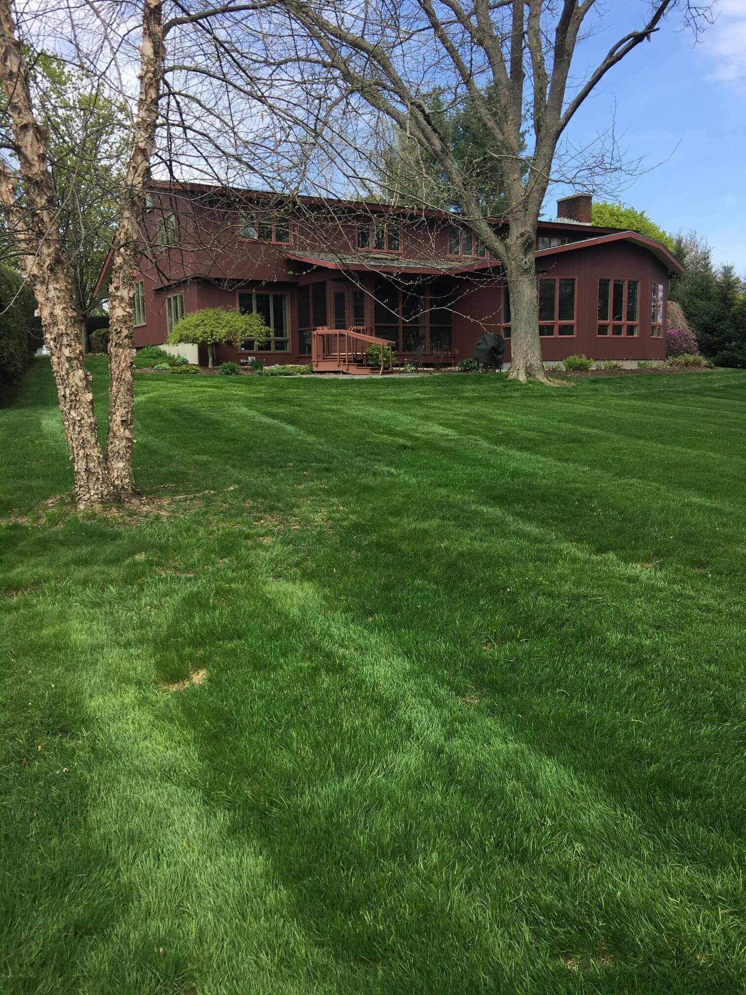 Lawn Care Project Six