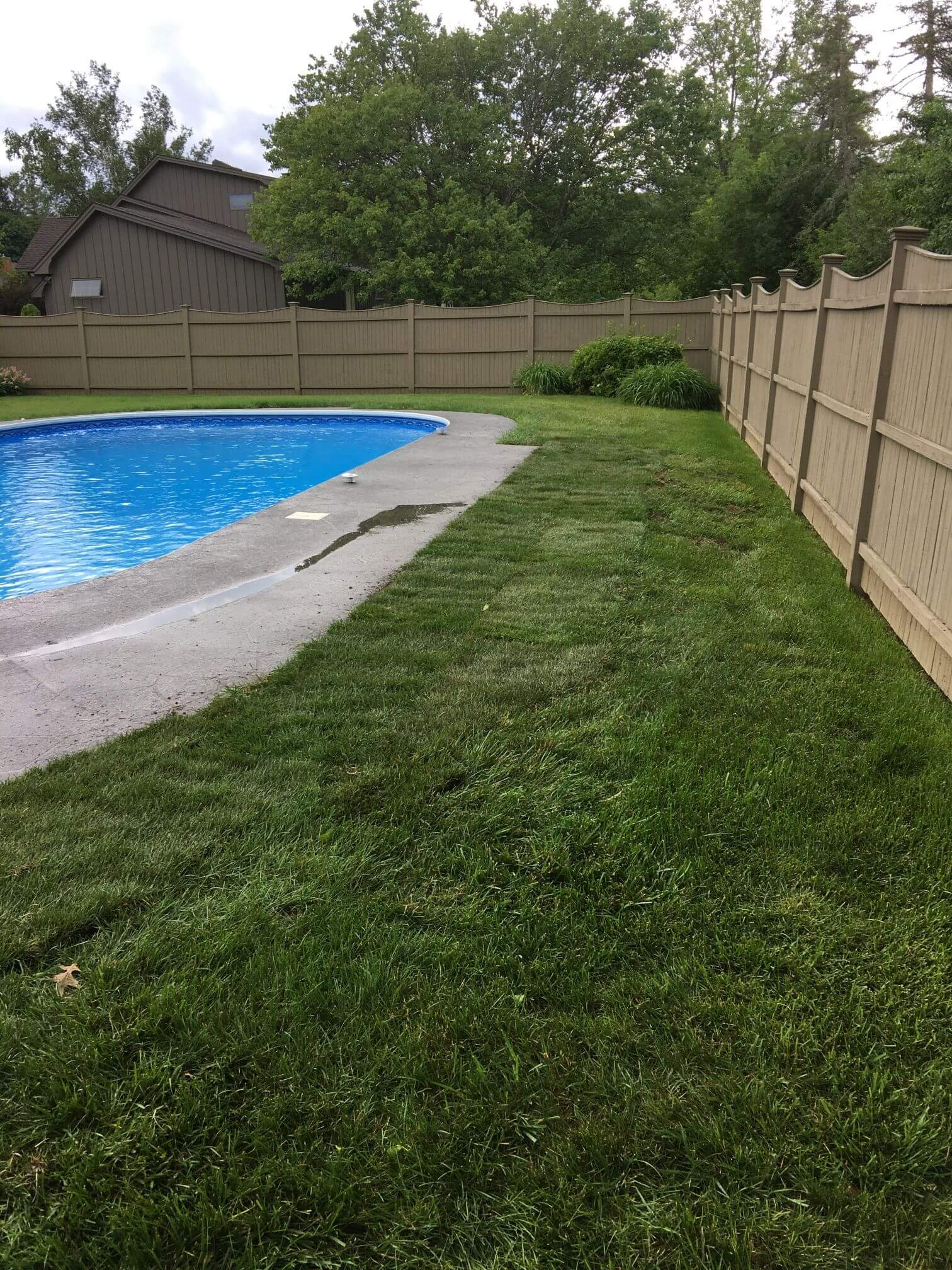 Lawn Care Project Four
