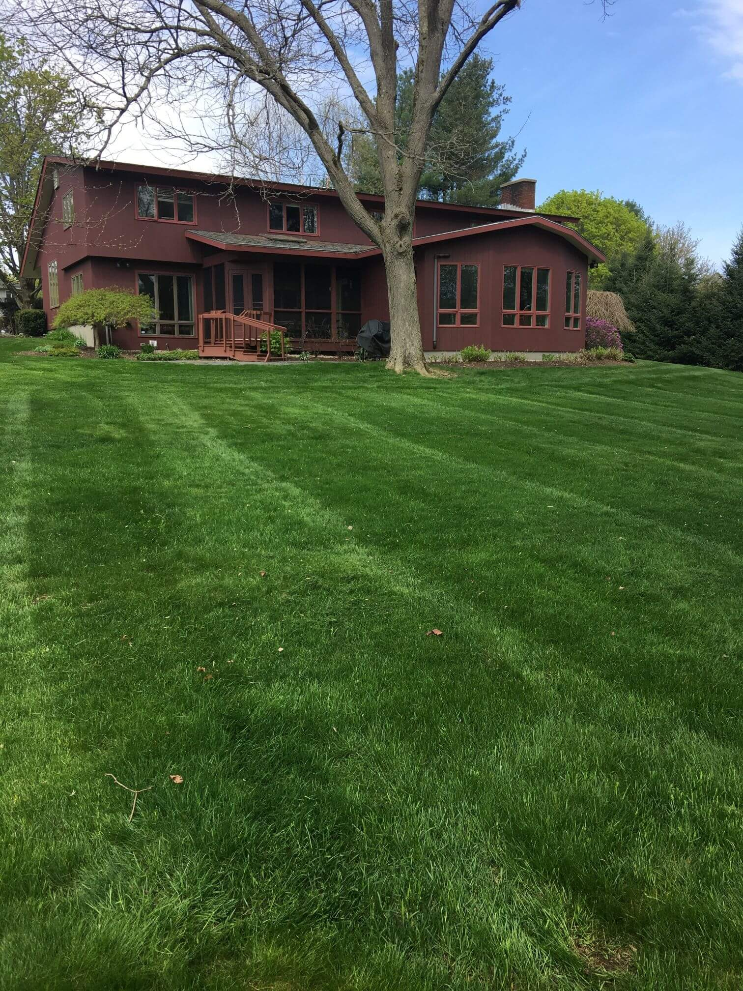 Lawn Care Project Two