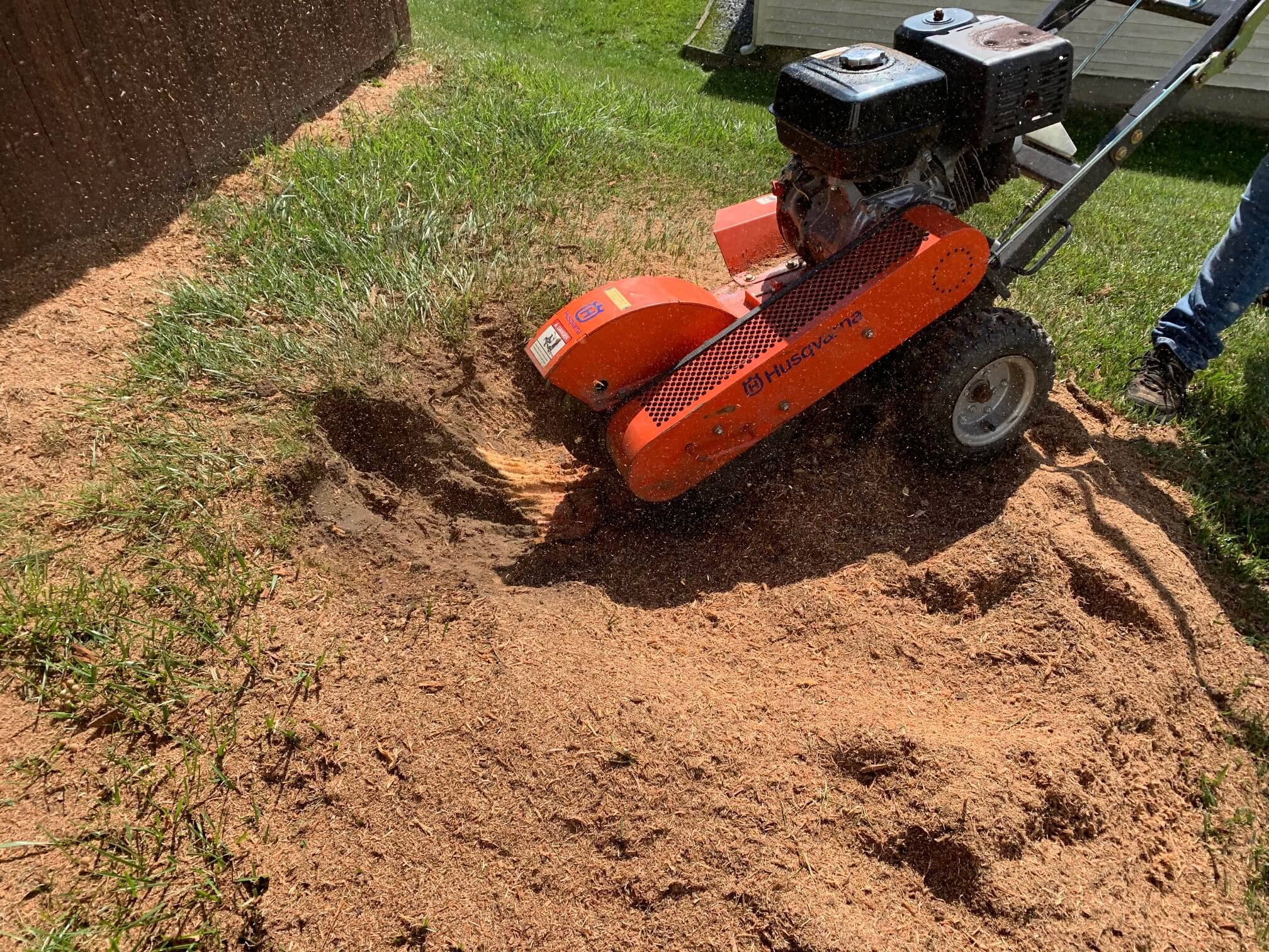 Stump Grinding or Tree Removal